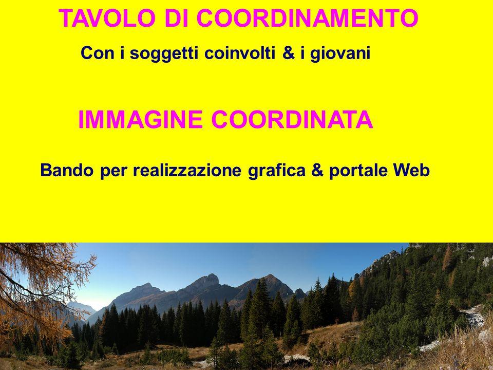 TAVOLO DI COORDINAMENTO Con i soggetti coinvolti & i giovani IMMAGINE COORDINATA Bando per realizzazione grafica & portale Web