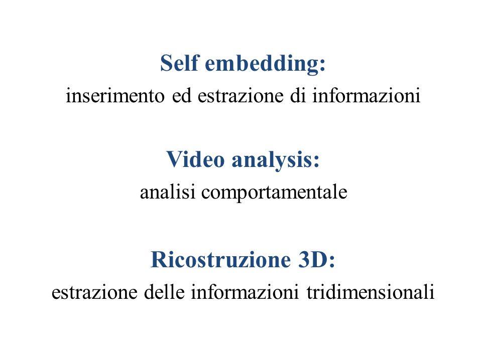 Self embedding: inserimento ed estrazione di informazioni Video analysis: analisi comportamentale Ricostruzione 3D: estrazione delle informazioni trid