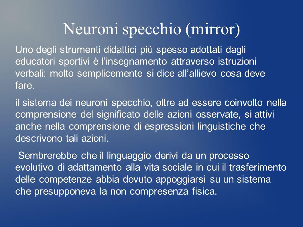 Neuroni specchio (mirror) Uno degli strumenti didattici più spesso adottati dagli educatori sportivi è linsegnamento attraverso istruzioni verbali: mo