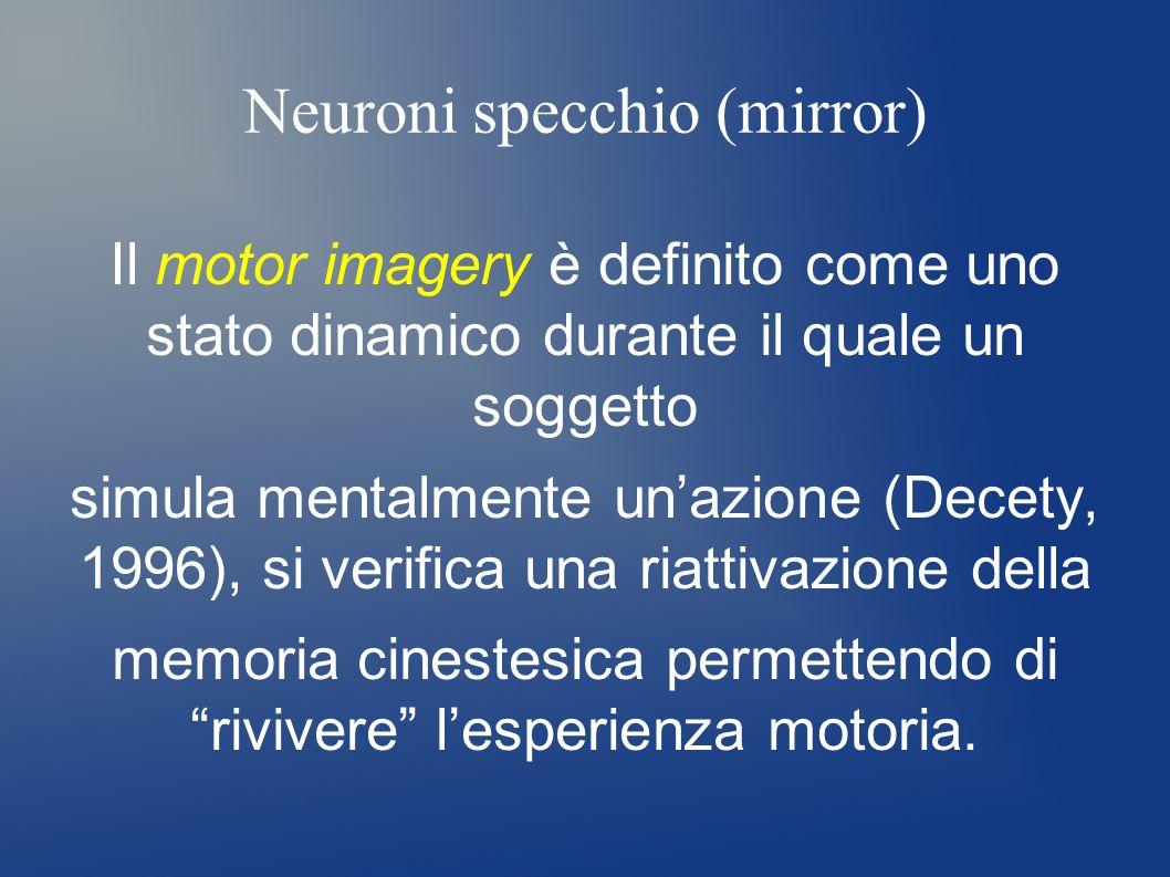 Neuroni specchio (mirror) Il motor imagery è definito come uno stato dinamico durante il quale un soggetto simula mentalmente unazione (Decety, 1996),