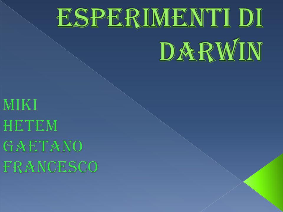 gli esperimenti raccontati in questo powerpoint sono tratti dal video idee pericolose,che fa parte di una serie di cd intitolati nel giardino di darwin.