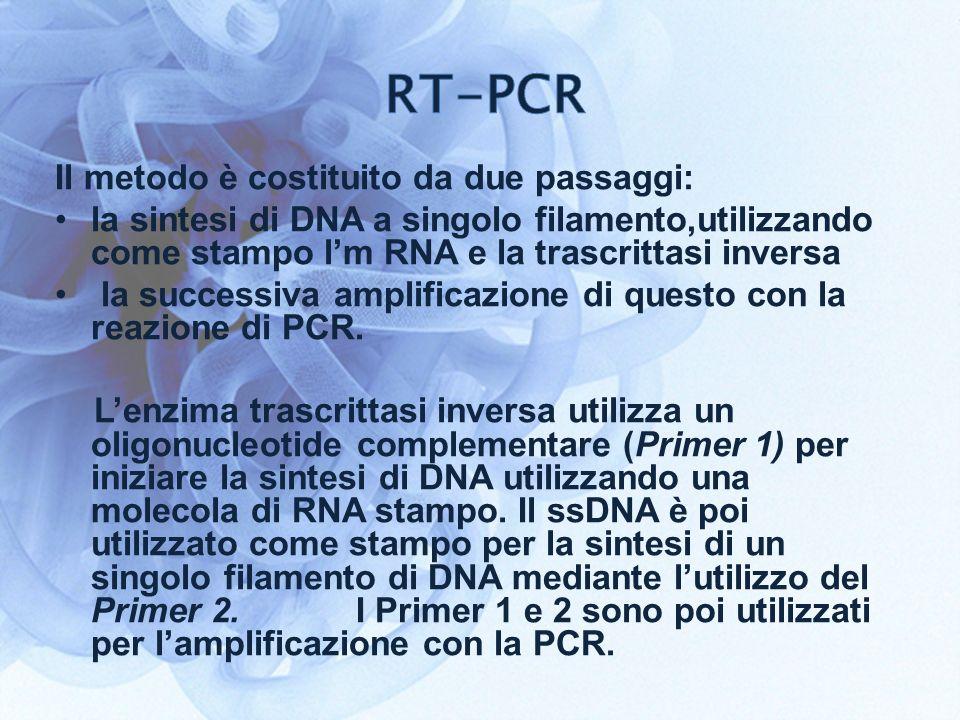 Il metodo è costituito da due passaggi: la sintesi di DNA a singolo filamento,utilizzando come stampo lm RNA e la trascrittasi inversa la successiva amplificazione di questo con la reazione di PCR.
