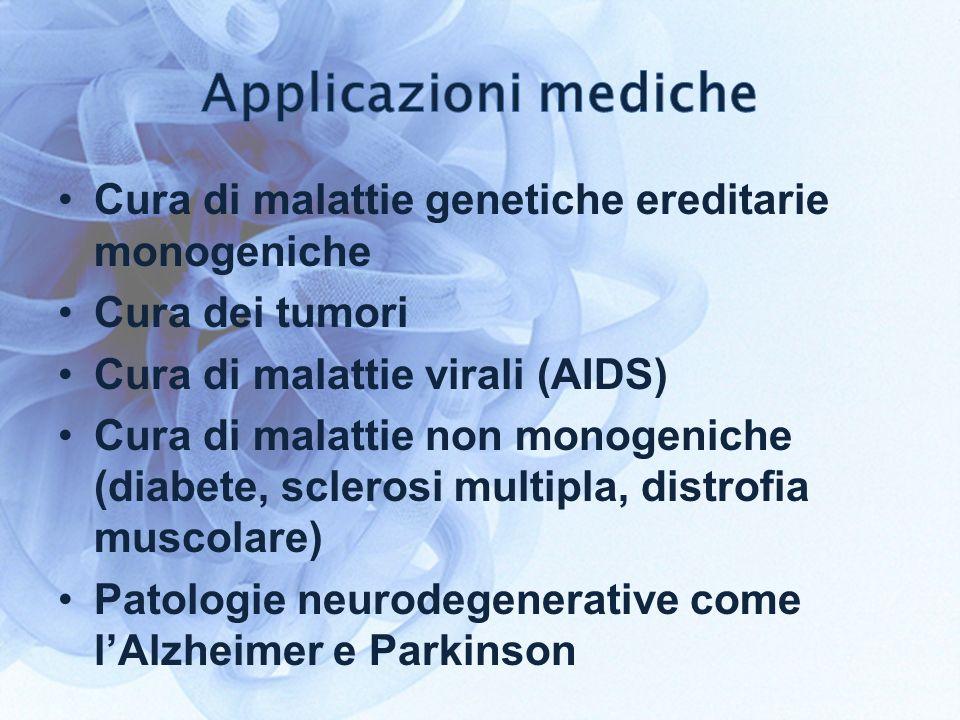 Cura di malattie genetiche ereditarie monogeniche Cura dei tumori Cura di malattie virali (AIDS) Cura di malattie non monogeniche (diabete, sclerosi multipla, distrofia muscolare) Patologie neurodegenerative come lAlzheimer e Parkinson