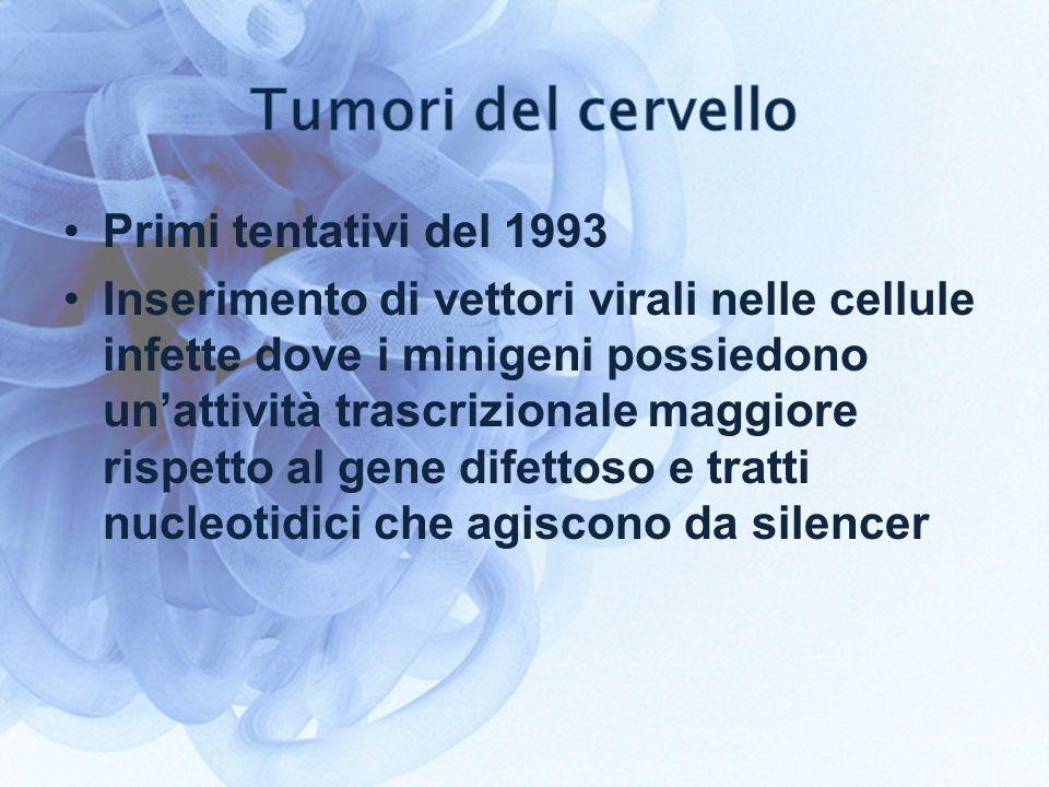 Primi tentativi del 1993 Inserimento di vettori virali nelle cellule infette dove i minigeni possiedono unattività trascrizionale maggiore rispetto al gene difettoso e tratti nucleotidici che agiscono da silencer