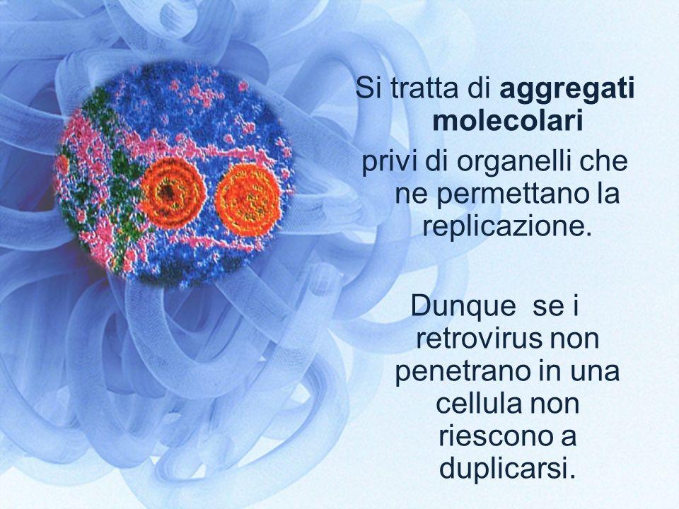 Si tratta di aggregati molecolari privi di organelli che ne permettano la replicazione. Dunque se i retrovirus non penetrano in una cellula non riesco
