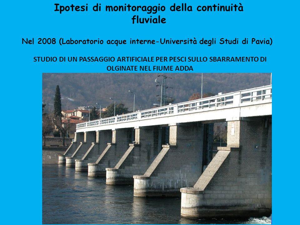 Nel 2008 (Laboratorio acque interne-Università degli Studi di Pavia) STUDIO DI UN PASSAGGIO ARTIFICIALE PER PESCI SULLO SBARRAMENTO DI OLGINATE NEL FI