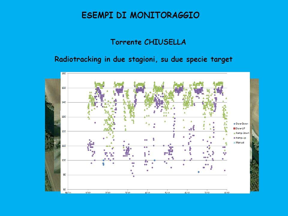 ESEMPI DI MONITORAGGIO Torrente CHIUSELLA Radiotracking in due stagioni, su due specie target