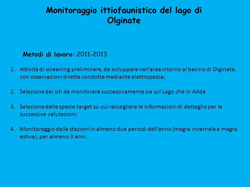 Monitoraggio ittiofaunistico del lago di Olginate 1.Campionamenti mediante reti multimaglia (10, 20, 30, 40, 50 mm) 2.Campionamenti mediante elettropesca lungo le rive 2011