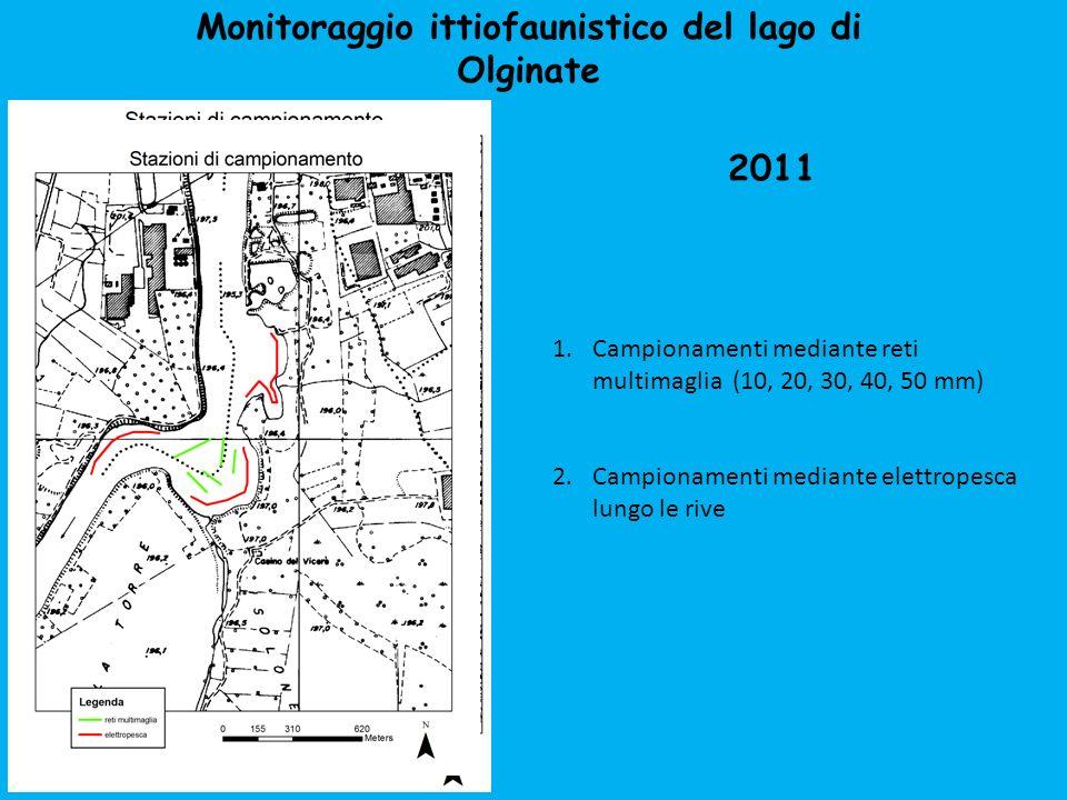 Monitoraggio ittiofaunistico del lago di Olginate 1.Campionamenti mediante reti multimaglia (10, 20, 30, 40, 50 mm) 2.Campionamenti mediante elettrope