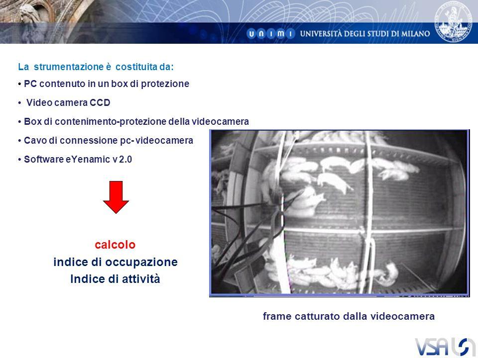 La strumentazione è costituita da: PC contenuto in un box di protezione Video camera CCD Box di contenimento-protezione della videocamera Cavo di connessione pc- videocamera Software eYenamic v 2.0 frame catturato dalla videocamera calcolo indice di occupazione Indice di attività