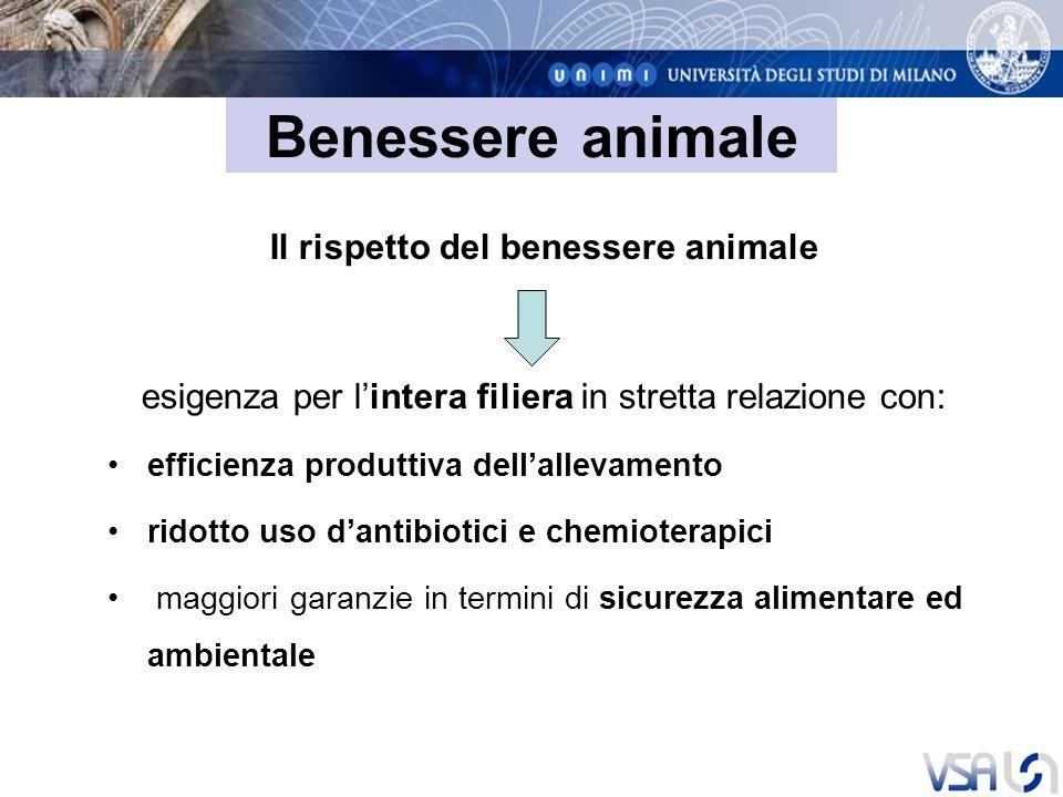 Benessere animale Il rispetto del benessere animale esigenza per lintera filiera in stretta relazione con: efficienza produttiva dellallevamento ridotto uso dantibiotici e chemioterapici maggiori garanzie in termini di sicurezza alimentare ed ambientale