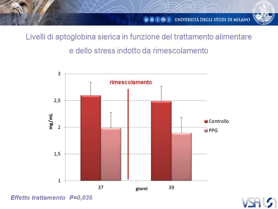 Livelli di aptoglobina sierica in funzione del trattamento alimentare e dello stress indotto da rimescolamento Effetto trattamento P=0,035 rimescolamento