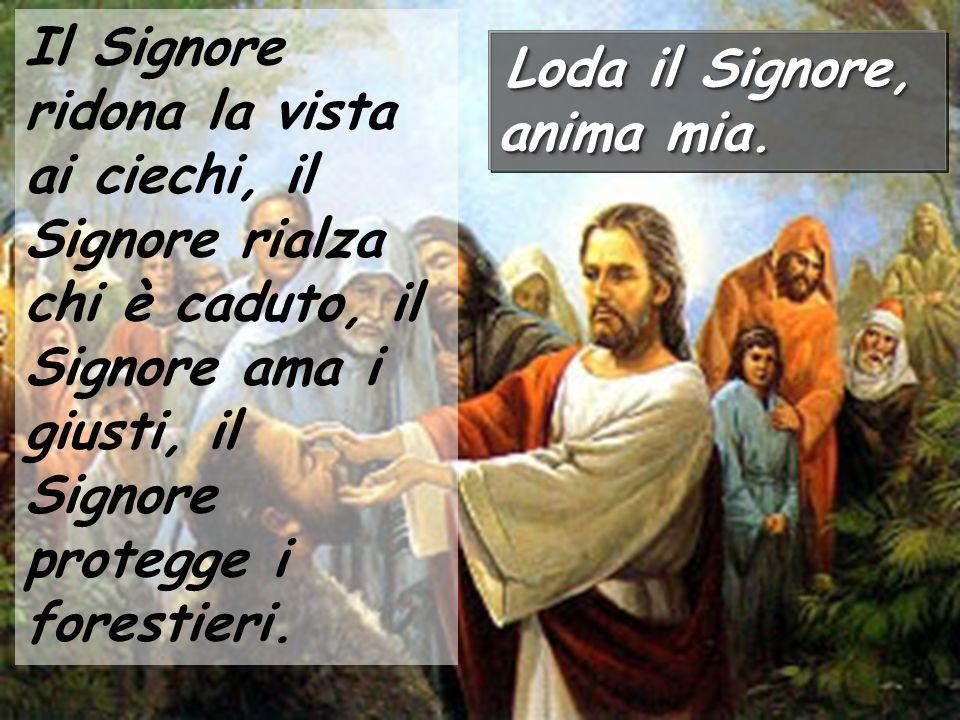 Il Signore ridona la vista ai ciechi, il Signore rialza chi è caduto, il Signore ama i giusti, il Signore protegge i forestieri. Loda il Signore, anim