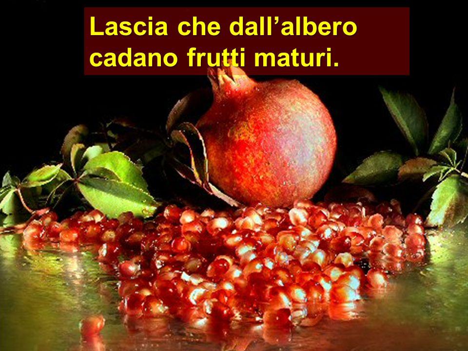 Lascia che dallalbero cadano frutti maturi.