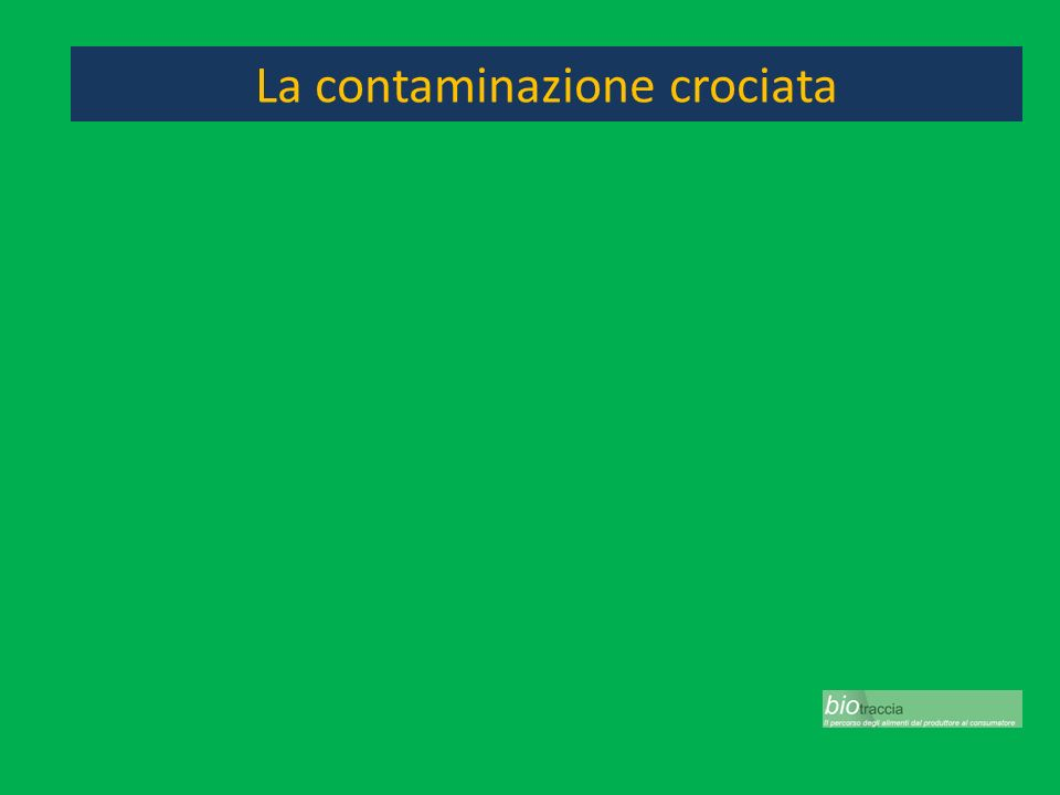 La contaminazione crociata