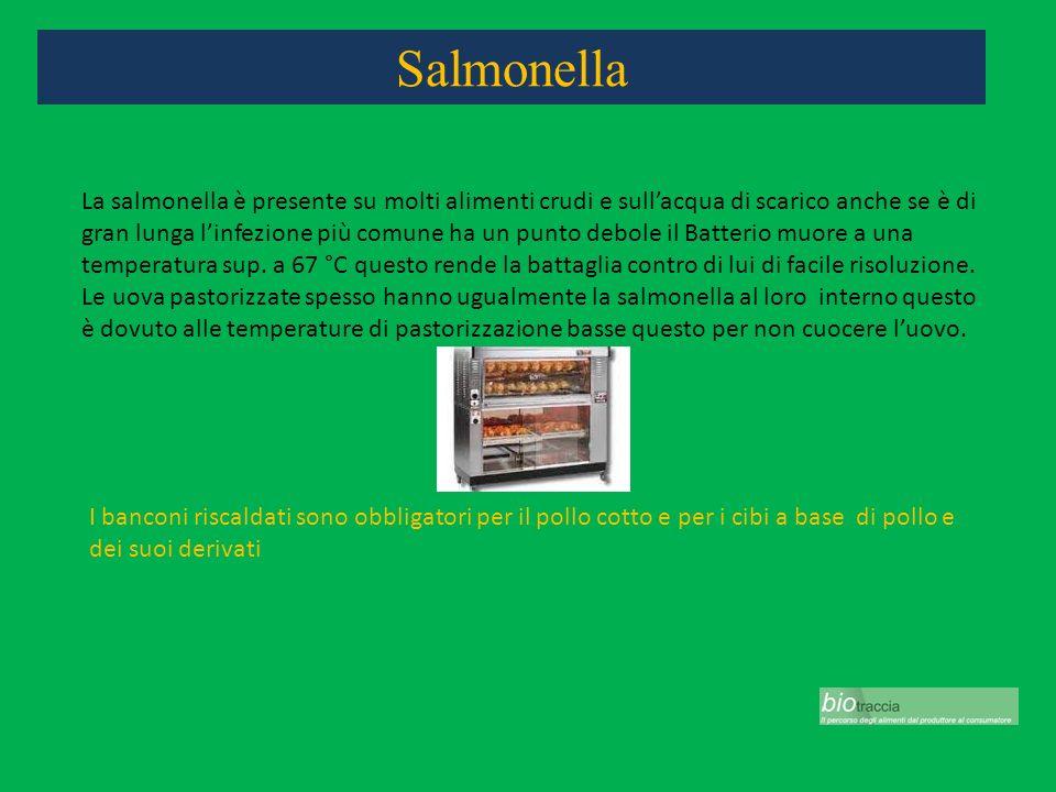 Salmonella La salmonella è presente su molti alimenti crudi e sullacqua di scarico anche se è di gran lunga linfezione più comune ha un punto debole i