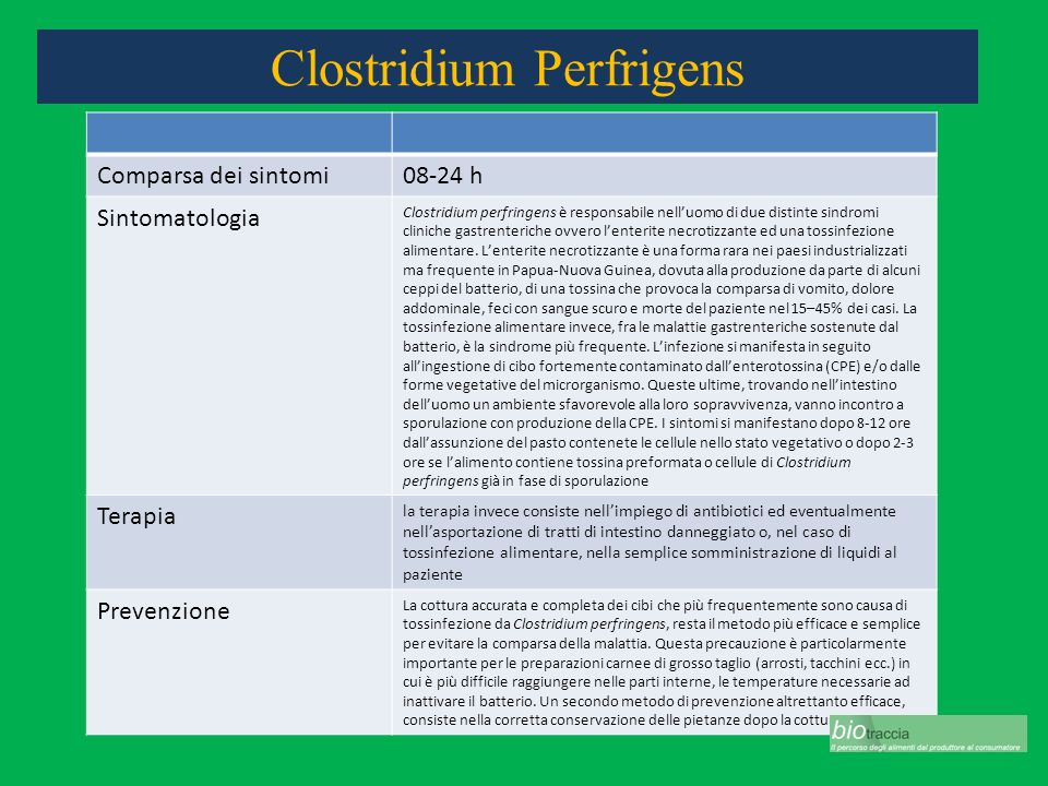 Clostridium Perfrigens Comparsa dei sintomi08-24 h Sintomatologia Clostridium perfringens è responsabile nelluomo di due distinte sindromi cliniche ga