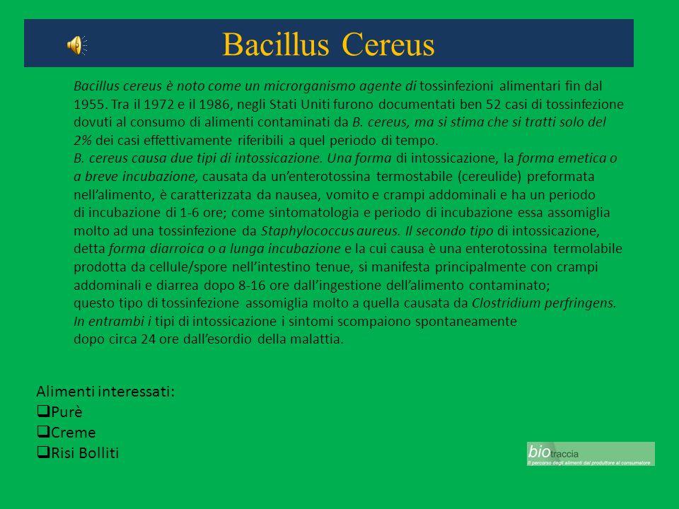 Bacillus Cereus Alimenti interessati: Purè Creme Risi Bolliti Bacillus cereus è noto come un microrganismo agente di tossinfezioni alimentari fin dal