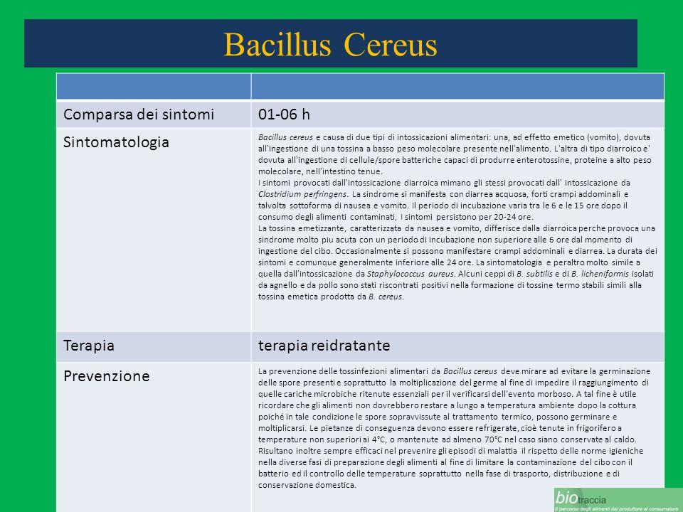 Bacillus Cereus Comparsa dei sintomi01-06 h Sintomatologia Bacillus cereus e causa di due tipi di intossicazioni alimentari: una, ad effetto emetico (