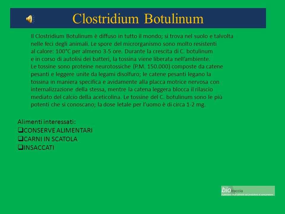 Clostridium Botulinum Alimenti interessati: CONSERVE ALIMENTARI CARNI IN SCATOLA INSACCATI Il Clostridium Botulinum è diffuso in tutto il mondo; si tr