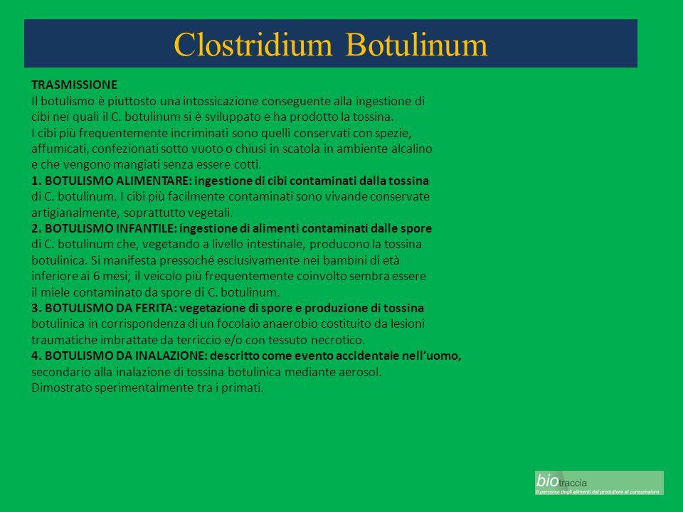 Clostridium Botulinum TRASMISSIONE Il botulismo è piuttosto una intossicazione conseguente alla ingestione di cibi nei quali il C. botulinum si è svil