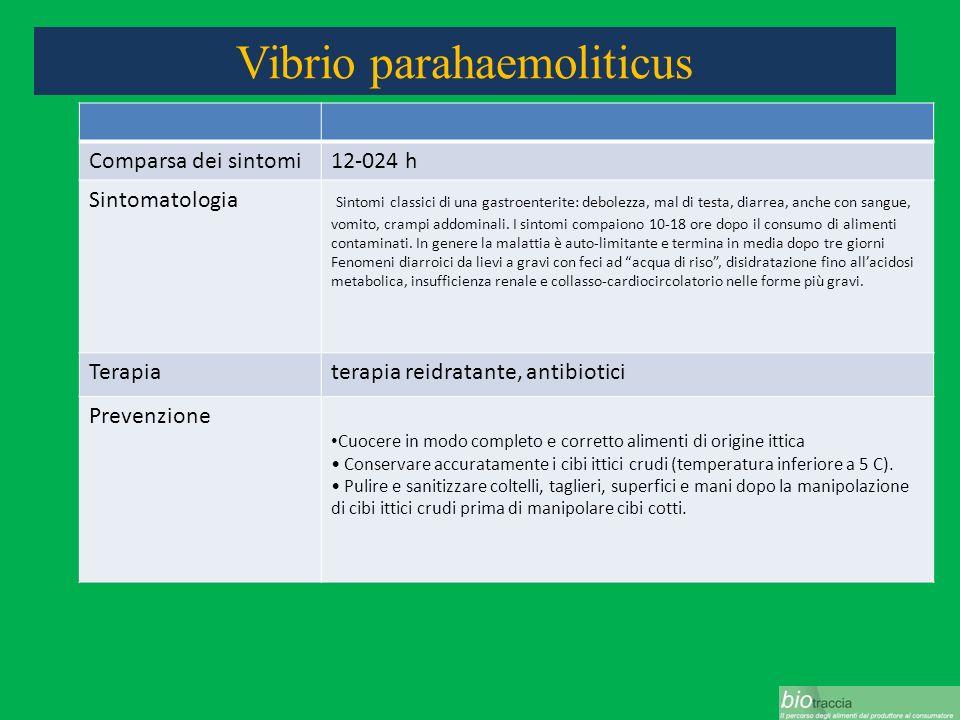 Vibrio parahaemoliticus Comparsa dei sintomi12-024 h Sintomatologia Sintomi classici di una gastroenterite: debolezza, mal di testa, diarrea, anche co