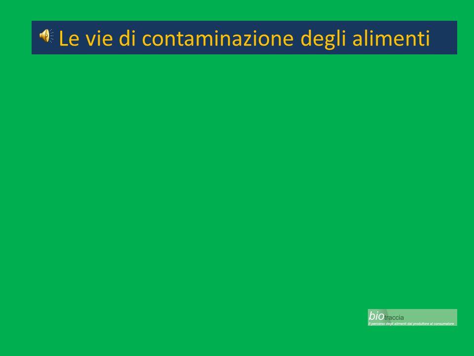 Ingredienti Trichina Anysakis Ciguatera Microalghe Batteri Funghi Le vie di contaminazione degli alimenti