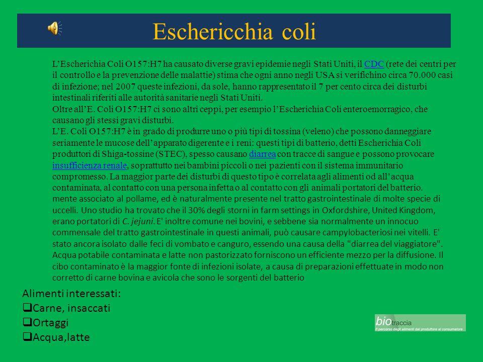 Eschericchia coli Alimenti interessati: Carne, insaccati Ortaggi Acqua,latte LEscherichia Coli O157:H7 ha causato diverse gravi epidemie negli Stati U