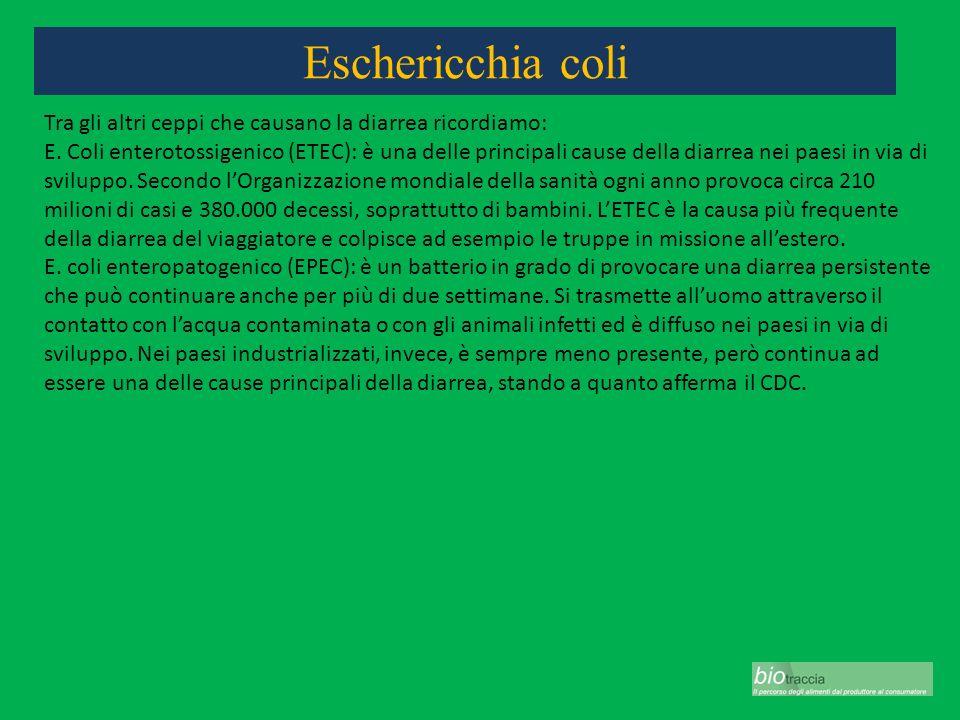 Eschericchia coli Tra gli altri ceppi che causano la diarrea ricordiamo: E. Coli enterotossigenico (ETEC): è una delle principali cause della diarrea