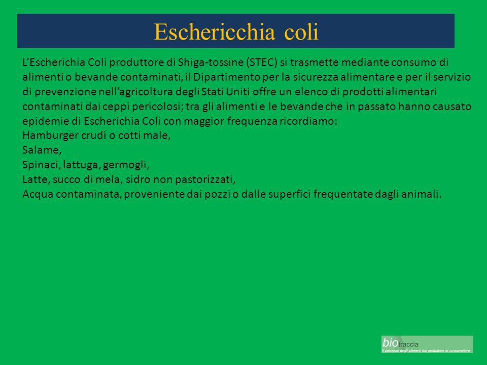 Eschericchia coli LEscherichia Coli produttore di Shiga-tossine (STEC) si trasmette mediante consumo di alimenti o bevande contaminati, il Dipartiment