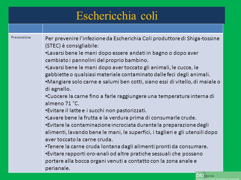 Eschericchia coli Prevenzione Per prevenire linfezione da Escherichia Coli produttore di Shiga-tossine (STEC) è consigliabile: Lavarsi bene le mani do