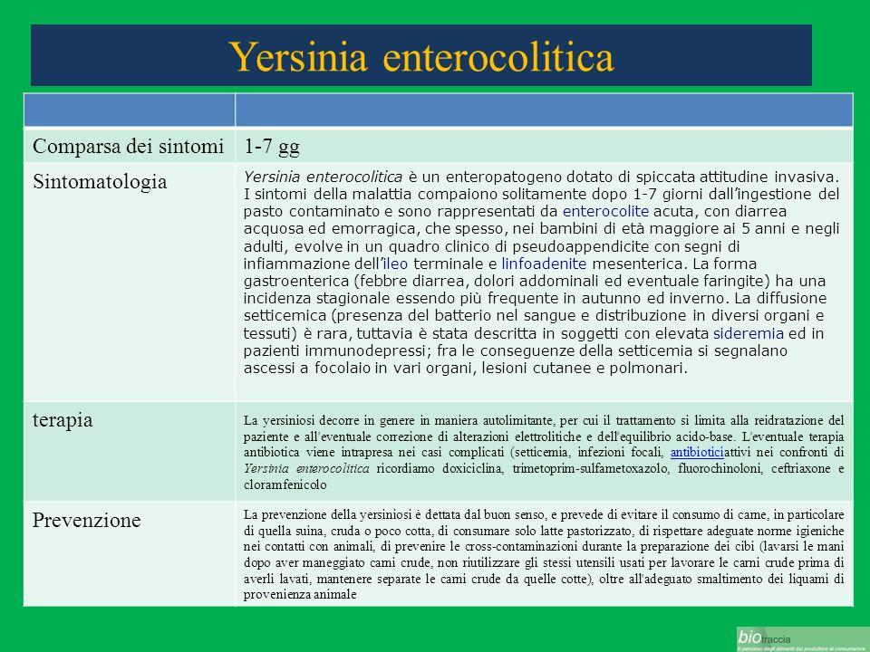 Yersinia enterocolitica Comparsa dei sintomi1-7 gg Sintomatologia Yersinia enterocolitica è un enteropatogeno dotato di spiccata attitudine invasiva.