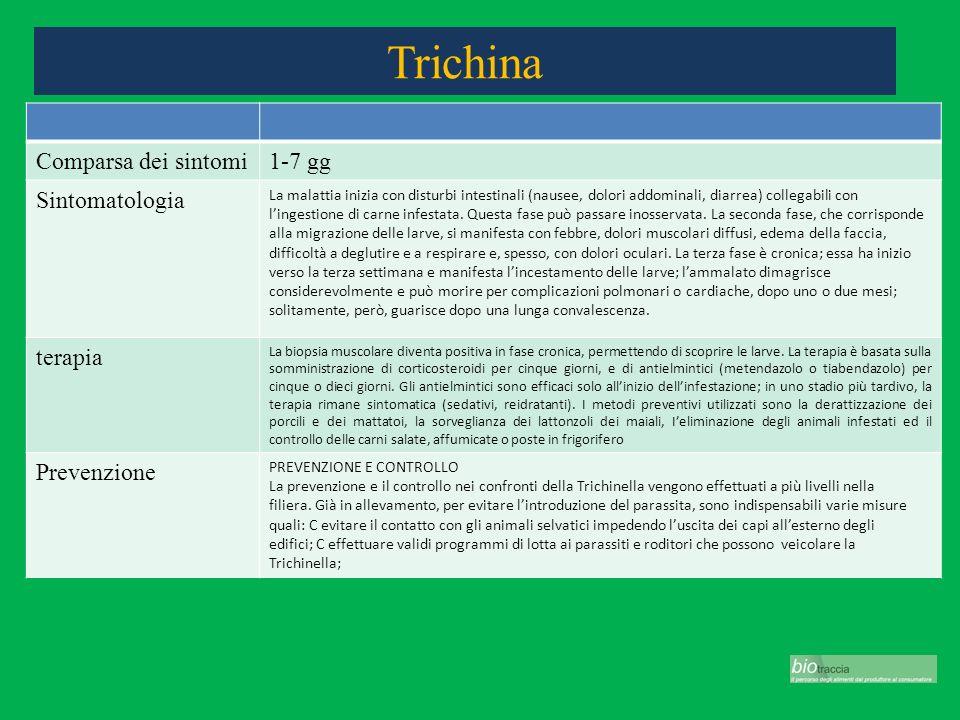 Trichina Comparsa dei sintomi1-7 gg Sintomatologia La malattia inizia con disturbi intestinali (nausee, dolori addominali, diarrea) collegabili con li