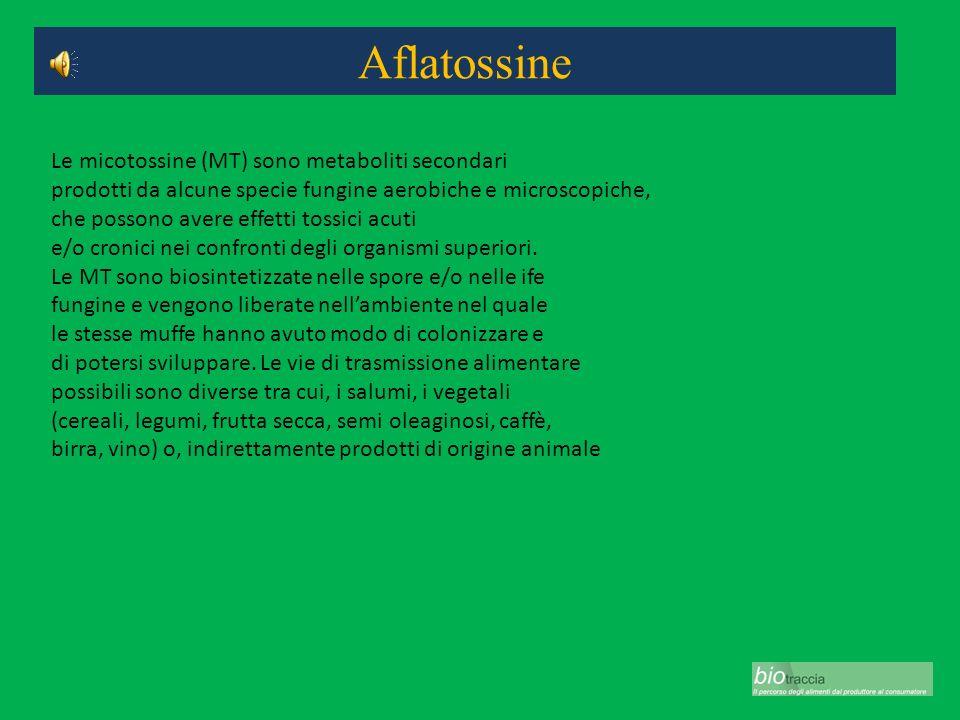 Aflatossine Le micotossine (MT) sono metaboliti secondari prodotti da alcune specie fungine aerobiche e microscopiche, che possono avere effetti tossi