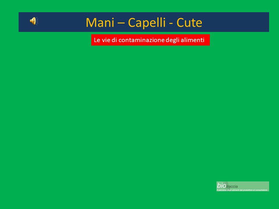 Mani – Capelli - Cute Le vie di contaminazione degli alimenti