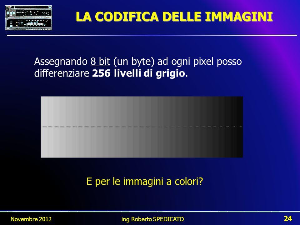 LA CODIFICA DELLE IMMAGINI Assegnando 8 bit (un byte) ad ogni pixel posso differenziare 256 livelli di grigio. E per le immagini a colori? Novembre 20