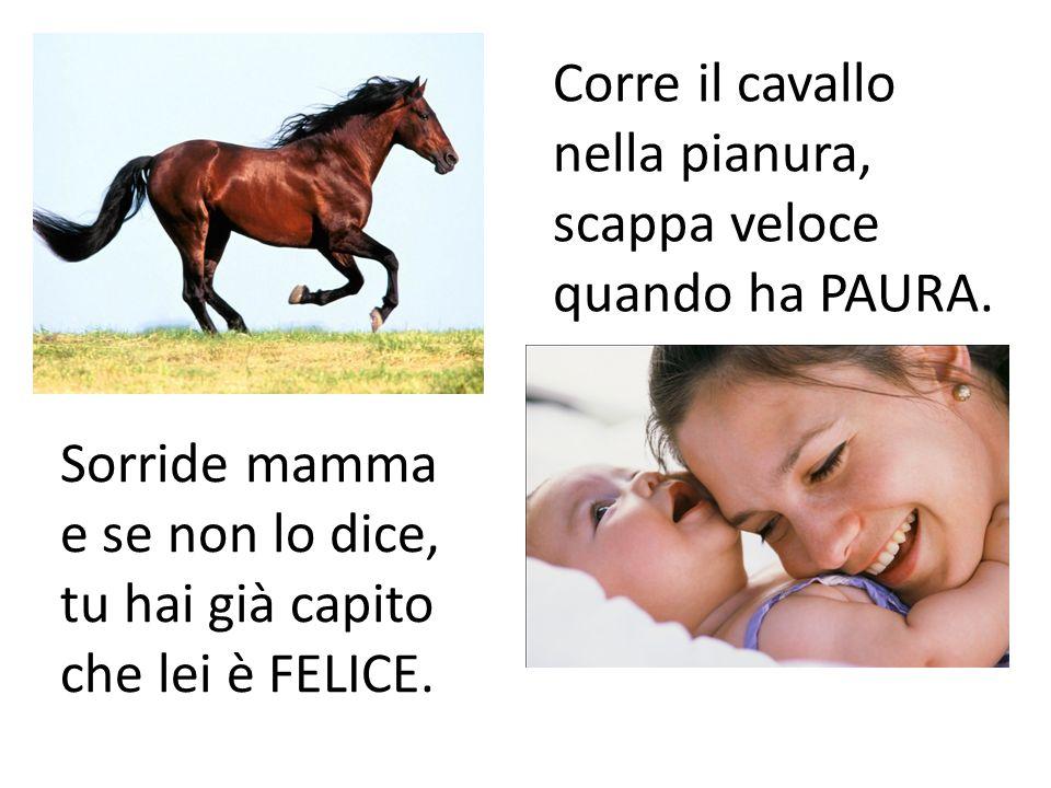 Corre il cavallo nella pianura, scappa veloce quando ha PAURA. Sorride mamma e se non lo dice, tu hai già capito che lei è FELICE.