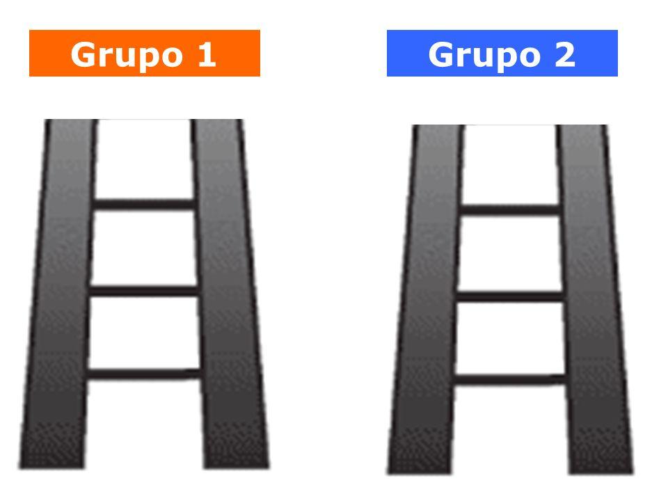 Grupo 1Grupo 2