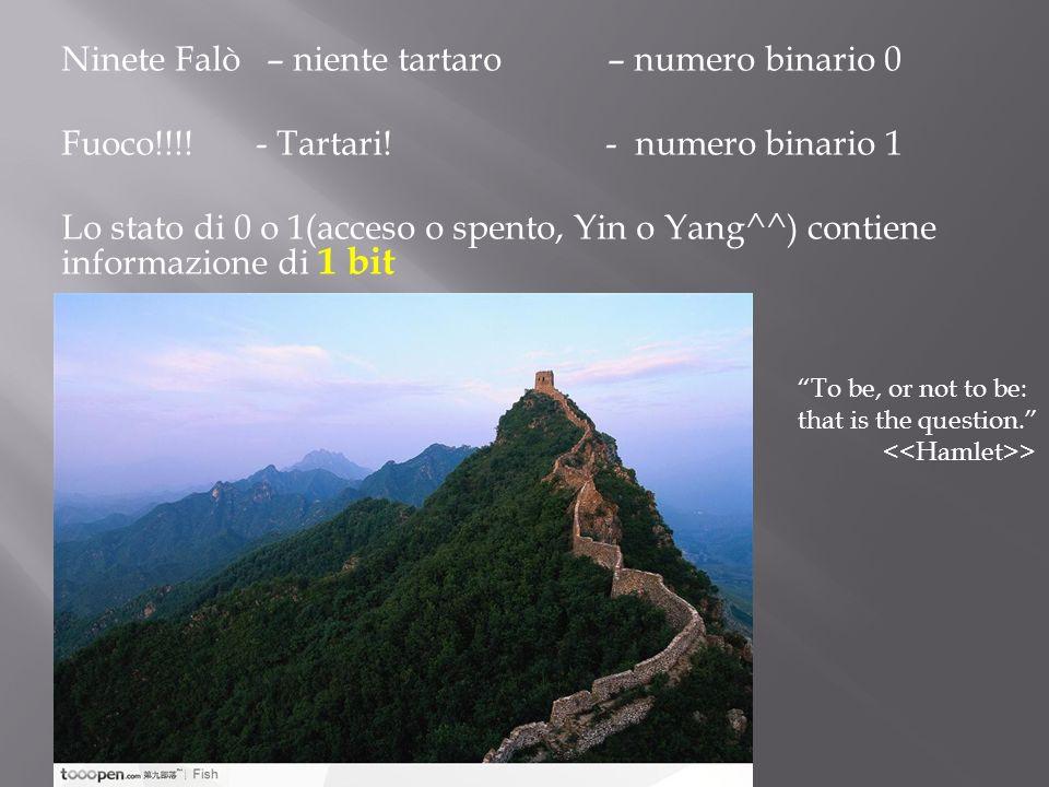 Ninete Falò – niente tartaro – numero binario 0 Fuoco!!!! - Tartari! - numero binario 1 Lo stato di 0 o 1(acceso o spento, Yin o Yang^^) contiene info