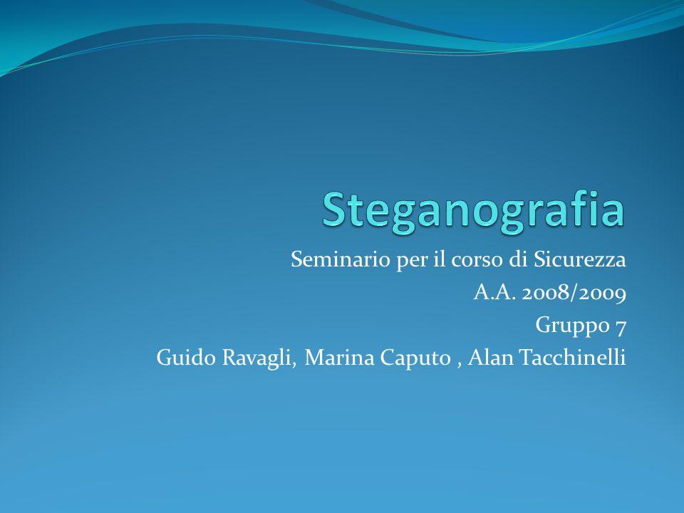 Seminario per il corso di Sicurezza A.A. 2008/2009 Gruppo 7 Guido Ravagli, Marina Caputo, Alan Tacchinelli