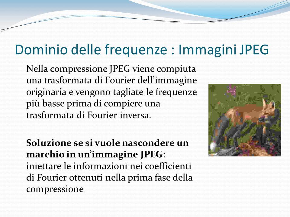 Dominio delle frequenze : Immagini JPEG Nella compressione JPEG viene compiuta una trasformata di Fourier dellimmagine originaria e vengono tagliate l