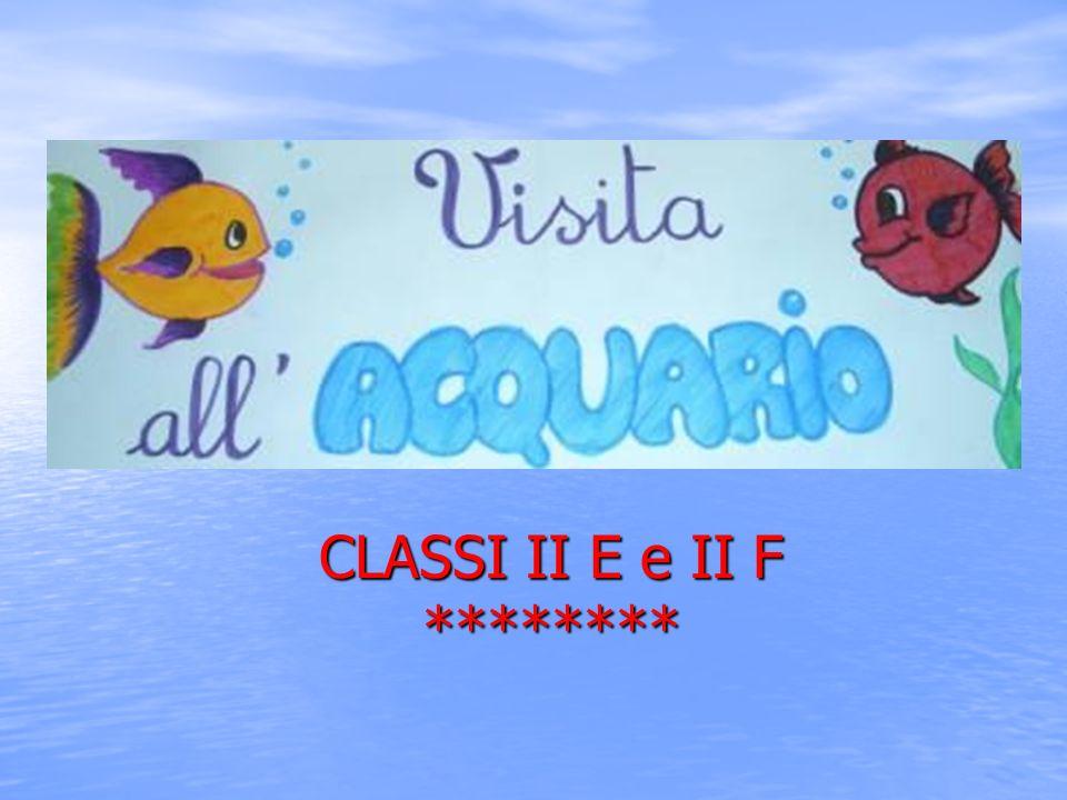 CLASSI II E e II F ********