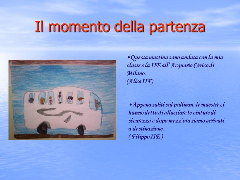 Il momento della partenza Questa mattina sono andata con la mia classe e la IIE all Acquario Civico di Milano.