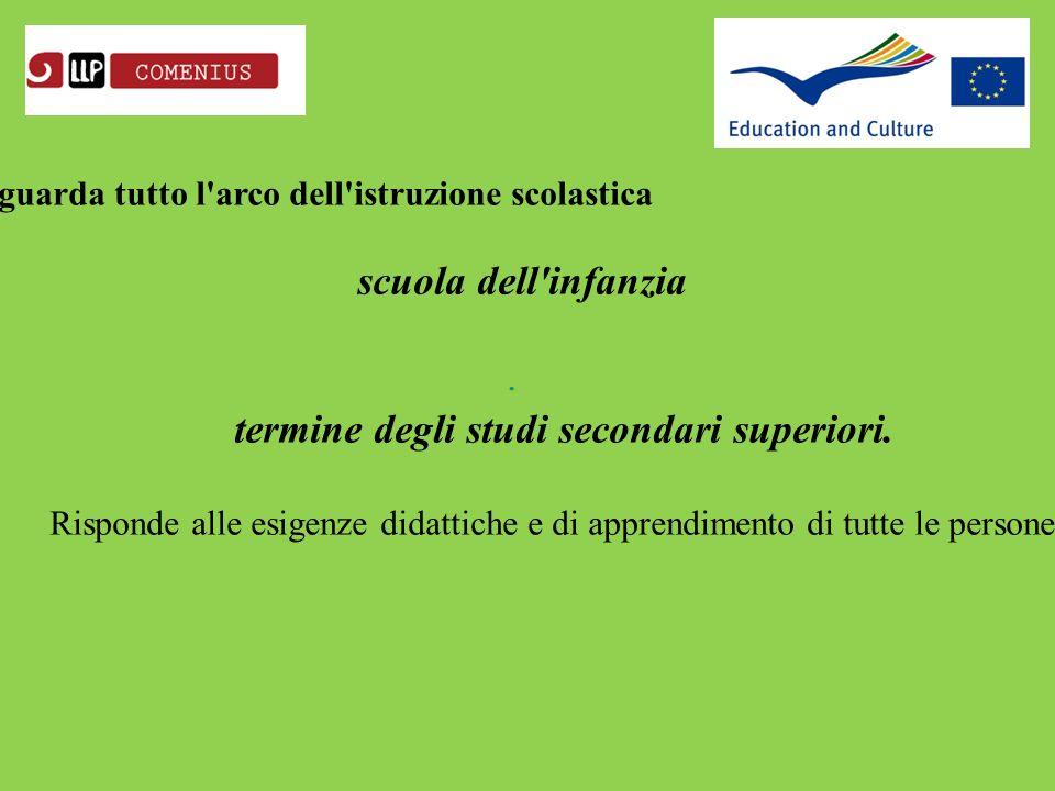 Il programma settoriale Comenius riguarda tutto l arco dell istruzione scolastica scuola dell infanzia termine degli studi secondari superiori.