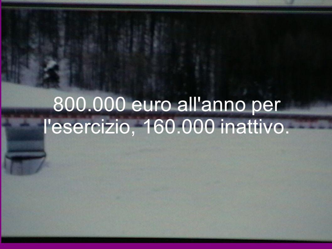 800.000 euro all'anno per l'esercizio, 160.000 inattivo.