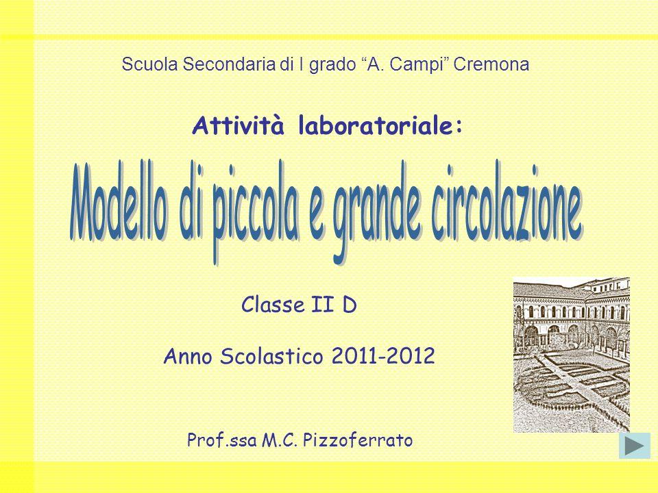 Attività laboratoriale: Classe II D Anno Scolastico 2011-2012 Prof.ssa M.C.