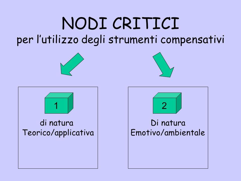 NODI CRITICI per lutilizzo degli strumenti compensativi di natura Teorico/applicativa Di natura Emotivo/ambientale 12