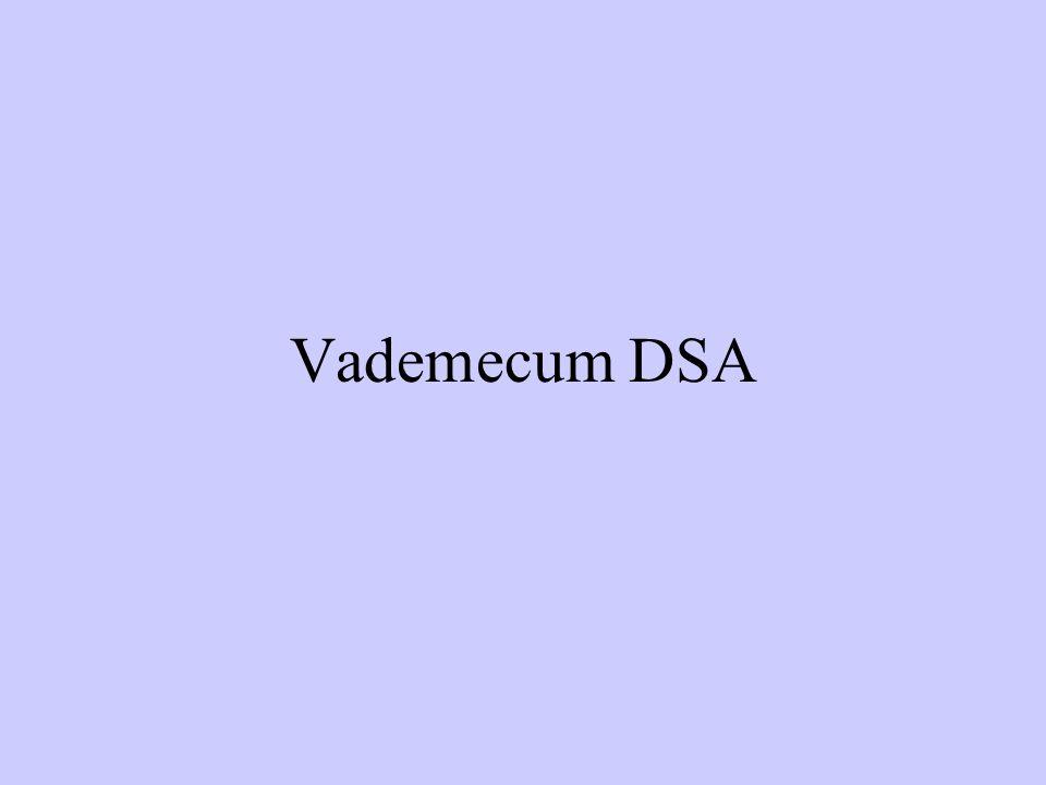 Vademecum DSA