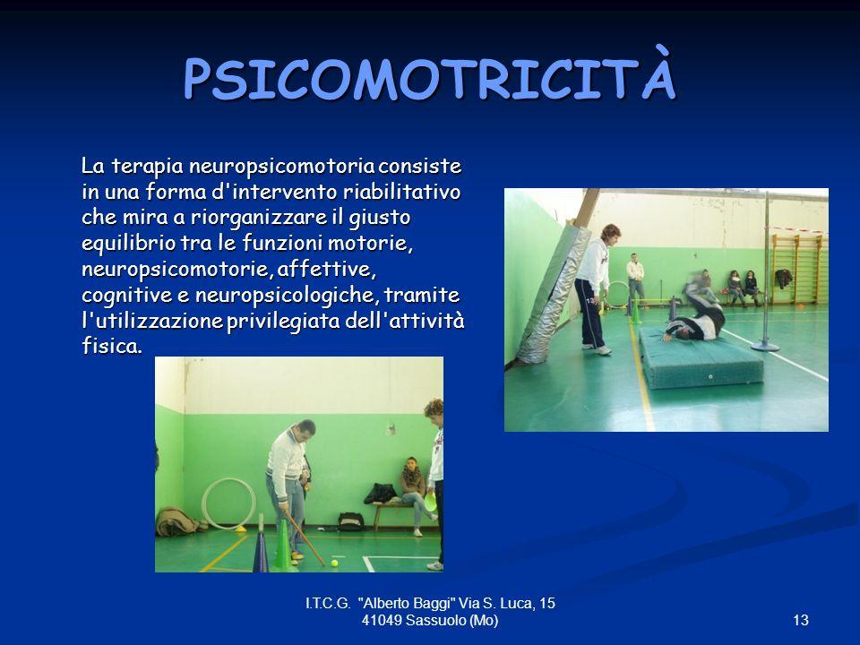 PSICOMOTRICITÀ La terapia neuropsicomotoria consiste in una forma d intervento riabilitativo che mira a riorganizzare il giusto equilibrio tra le funzioni motorie, neuropsicomotorie, affettive, cognitive e neuropsicologiche, tramite l utilizzazione privilegiata dell attività fisica.