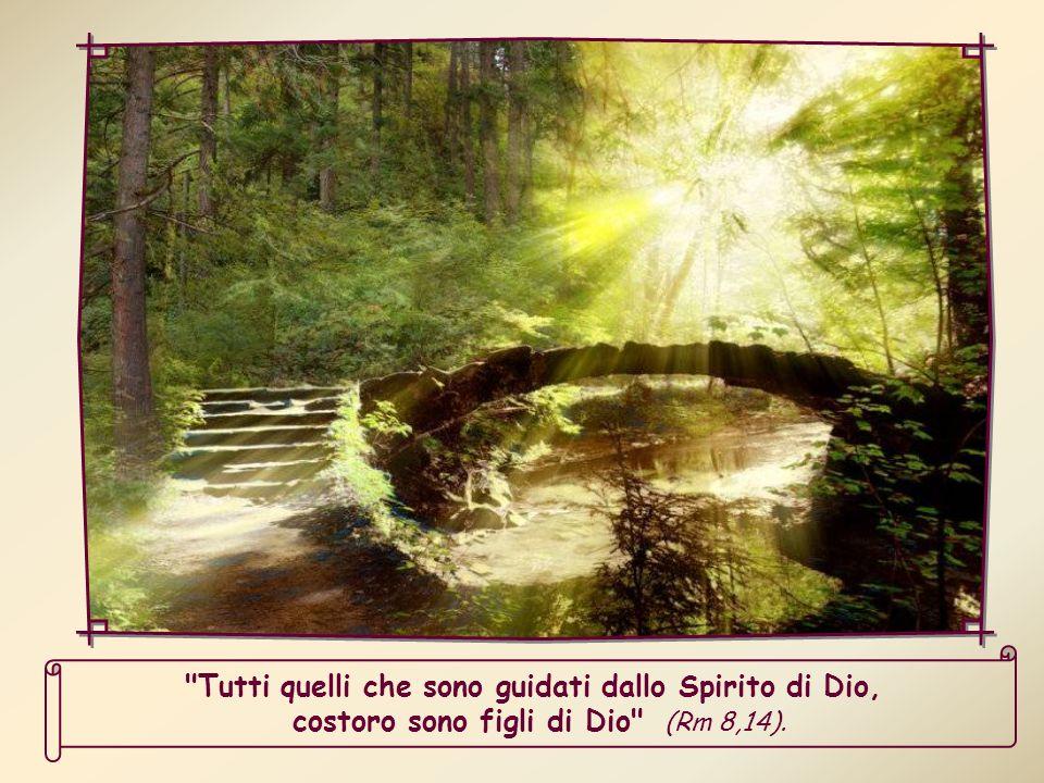 Tutti quelli che sono guidati dallo Spirito di Dio, costoro sono figli di Dio (Rm 8,14).